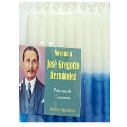 NOVENA BEATO JOSE GREGORIO